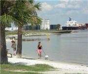 Photo of Davis Island Dog Beach - Tampa, FL - Tampa, FL