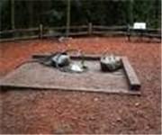 Photo of Woodland Park Off-Leash Area - Seattle, WA