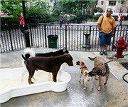 Photo of DeWitt Clinton Park Dog Run - New York, NY