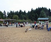 Photo of Westcrest Park Off-leash Area - Seattle, WA
