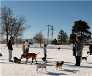 Photo of Berkeley Dog Park - Denver, CO