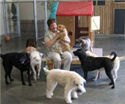 Photo of Dinah's Doggie Daycare - Torrance, CA