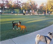 Photo of Roy M Butcher Dog Park - San Jose, CA