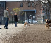 Shaw Dog Park - Washington, DC 
