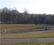 Photo of Prospect Park Dog Run - Brooklyn, NY