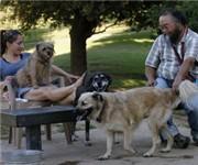 Photo of Partner Dog Park - Sacramento, CA