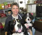 Dog Day Care Bennington Vt