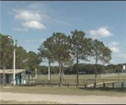 Photo of Logan Gate Dog Park - Tampa, FL