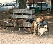 Photo of McGolrick Park Dog Run - Brooklyn, NY
