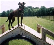 Photo of Eagle Creek Bark Park - Indianapolis, IN