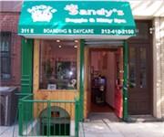 Photo of Sandy Doggie Kitty Spa - New York, NY