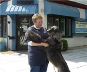 Bonnies Dog & Cat Grooming - Washington, DC (202) 548-0044