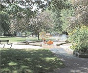 Photo of Daniel F. Ford Park Off Leash Dog Area - Brookline, MA
