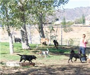 Photo of Children's Memorial Dog Park - Las Vegas, NV
