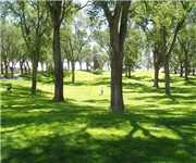 Photo of Roosevelt Dog Park - Albuquerque, NM