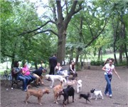 Photo of St. Nicholas Dog Park - New York, NY