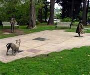 Photo of Grant Park Dog Park - Portland, OR