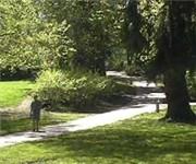 Photo of Laurelhurst Park Off-leash Dog Park - Portland, OR